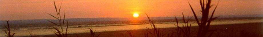 Und immer wieder geht die Sonne auf! Sonnenaufgang im Médoc